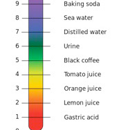 The Alkaline Mouth